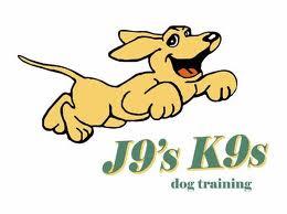 Best Dogs Ever-Private Dog Trainer, Hudson Shock, CPDT-KA